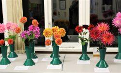 Classes 1 & 2: Dahlias Decorative & Cactus/Semicactus